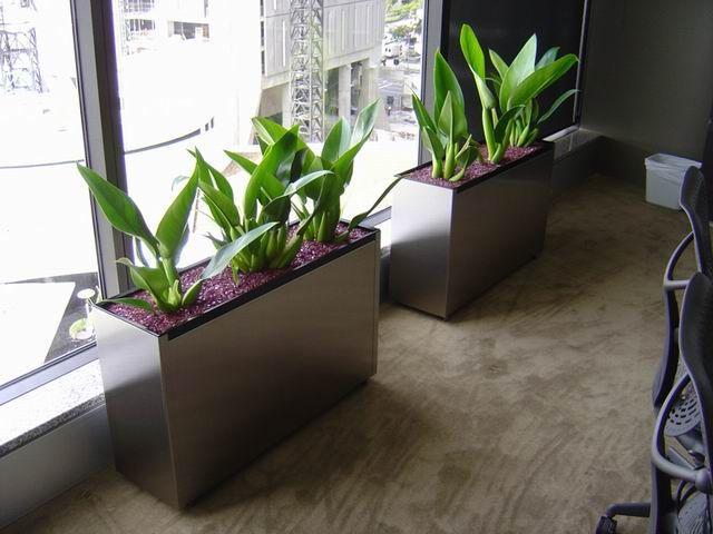 Pots Planters Choice Indoor Pots Outdoor Planters