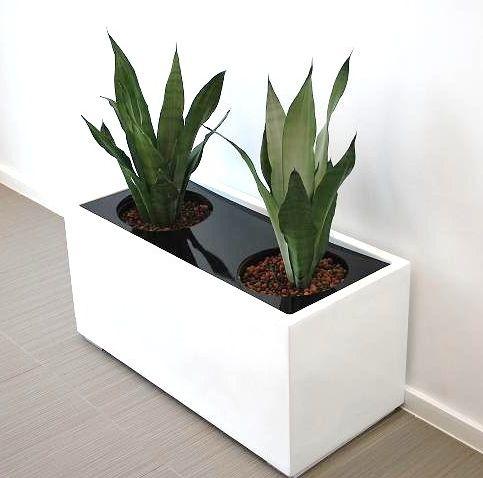 Pots Amp Planters Choice Indoor Pots Outdoor Planters