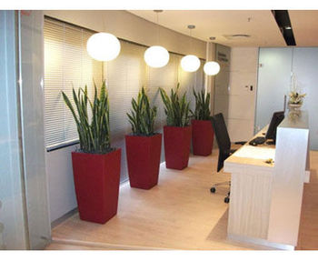 Office-Plant-Hire-6.jpg